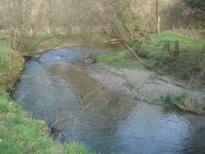 The river Ceri