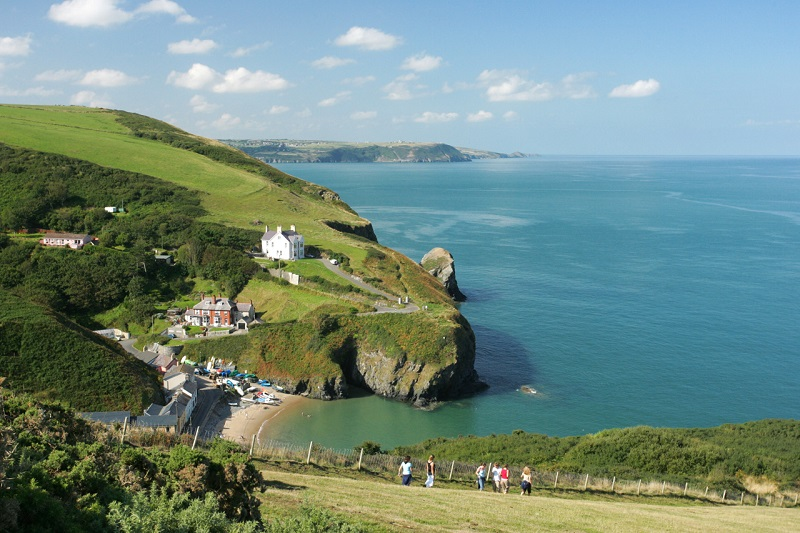 Llangrannog from the Coast Path